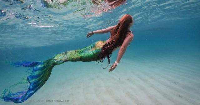 sok hal a tengerben randi nz randevú bejelentkezés
